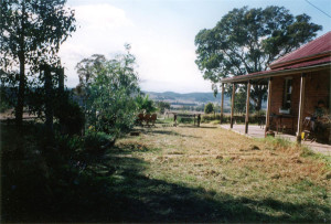 Janet_mansfileds_farm_Gulgong_Australia_big